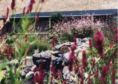 gardens-09
